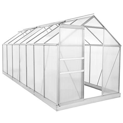 Zelsius Aluminium Gewächshaus für den Garten   inklusive Fundament   430 x 190 cm   6 mm Platten   Vielseitig nutzbar als Treibhaus, Tomatenhaus, Frühbeet und...