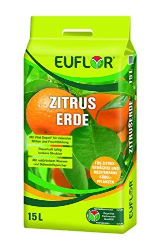 Euflor Zitruserde 15 l Tragebeutel aufgedüngte Spezialerde für alle Zitrusgewächse und mediterrane Kübelpflanzen im Innen- und Außenbereich, kräftige grüne...