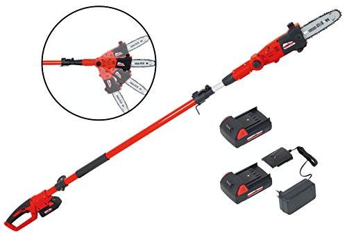 Sécateur à batterie Grizzly AKS 1820 T Lion Set, chaîne chromée OREGON, avec 2 batteries et chargeur avec poignée télescopique