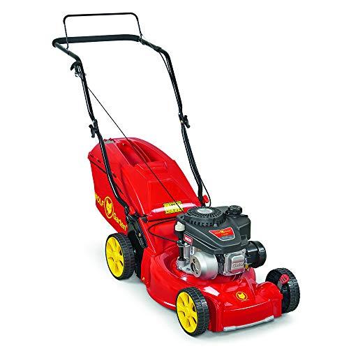 WOLF-Garten - Lawn Mower, A 4200 - Gasoline Lawn Mower, 11A-LOSC650