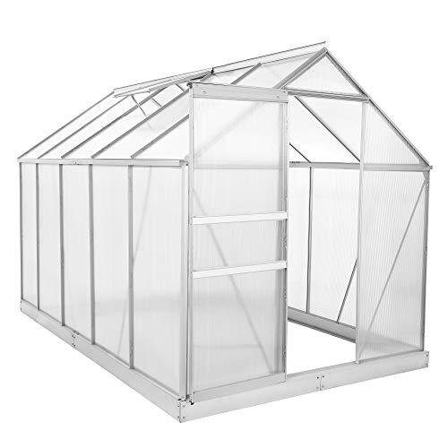 Zelsius Aluminium Gewächshaus für den Garten | inklusive Fundament | 310 x 190 cm | 6 mm Platten | Vielseitig nutzbar als Treibhaus, Tomatenhaus, Frühbeet und...