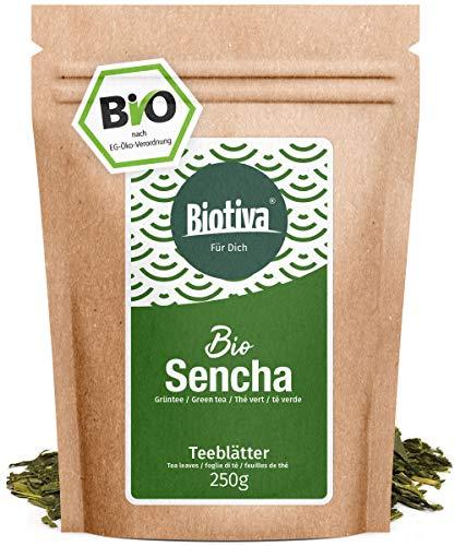 Bio Sencha Grüntee (250g) - Top Japan-Style - Spitzenpreis - Vorratspackung für 100 Tassen - Mild, leicht grasig, dabei feinherb und blumig - Fairbiotea-Zertifikat...