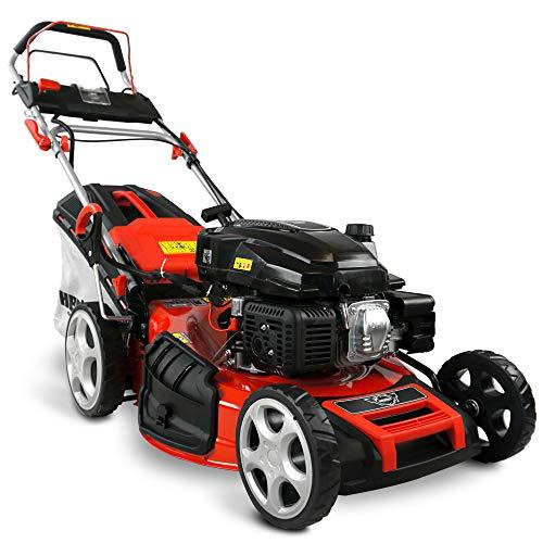 HECHT 5-IN-1 Benzin Rasenmäher – leistungsstarker 4 Takt Eco Motor 4,4 kW (6,0 PS) – Elektrostart – 53 cm Schnittbreite – 75 l Fangkorb – Radantrieb –...