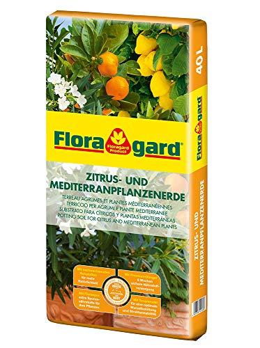 Floragard Zitrus- und Mediterranpflanzenerde 40 L • für mediterrane Kulturen • beispielsweise für Oleander, Oliven-, Feigen-, Limetten-, Orangen- und...