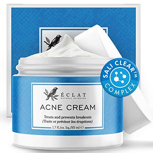Akne Creme von Eclat - Natürlich Wirksame Ascorbinsäure Anti Pickel Creme - Entfernt Hautflecken, Unreinheiten und Mitesser - Feuchtigkeitsspendend und geeignet...