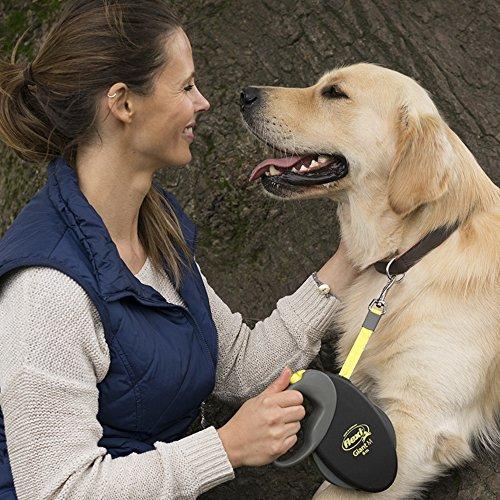 Hundeleine Flexi Roll-Leine GIANT L 8 m Führleine Gurt für Hunde bis 50 kg Hundeführleine
