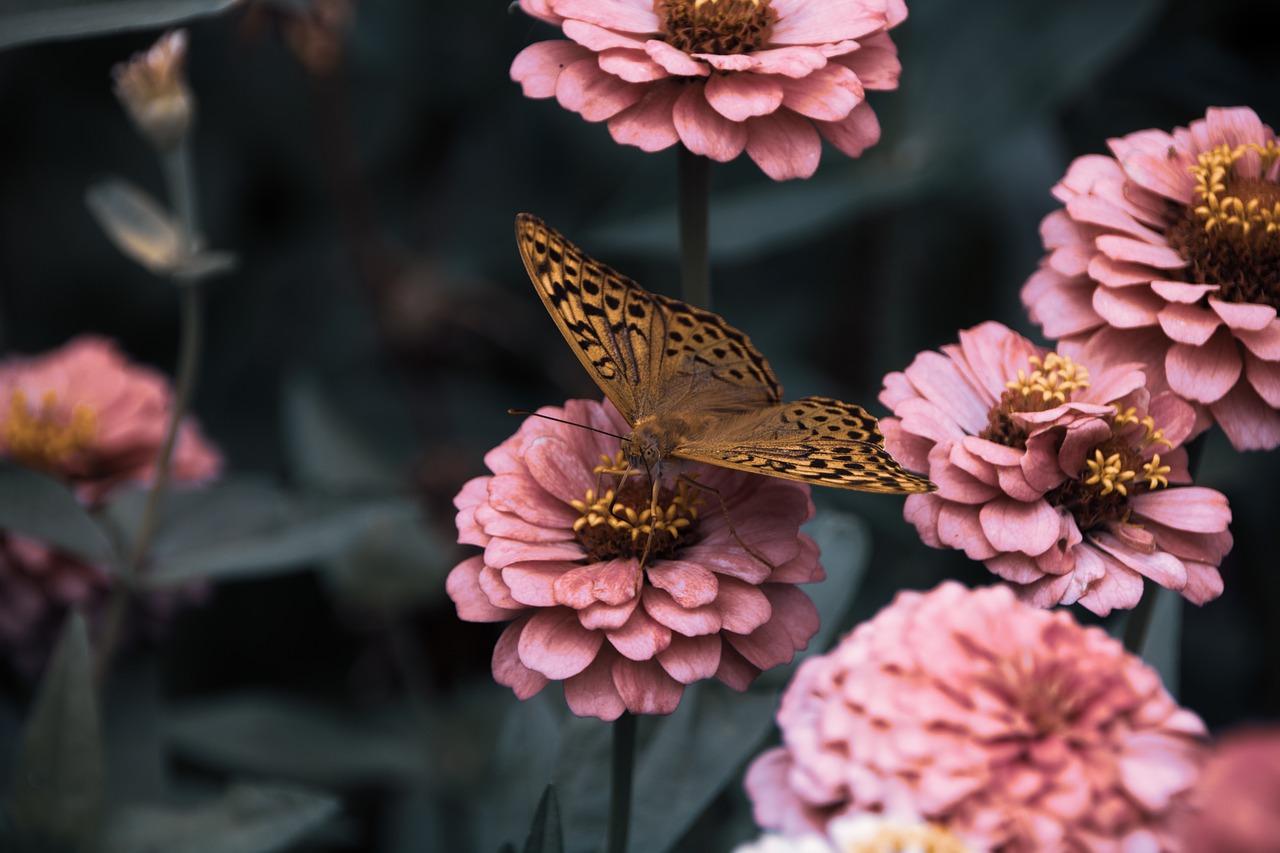 Gardena Gartenschere