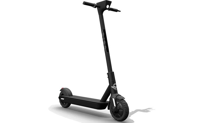 bird-escooter