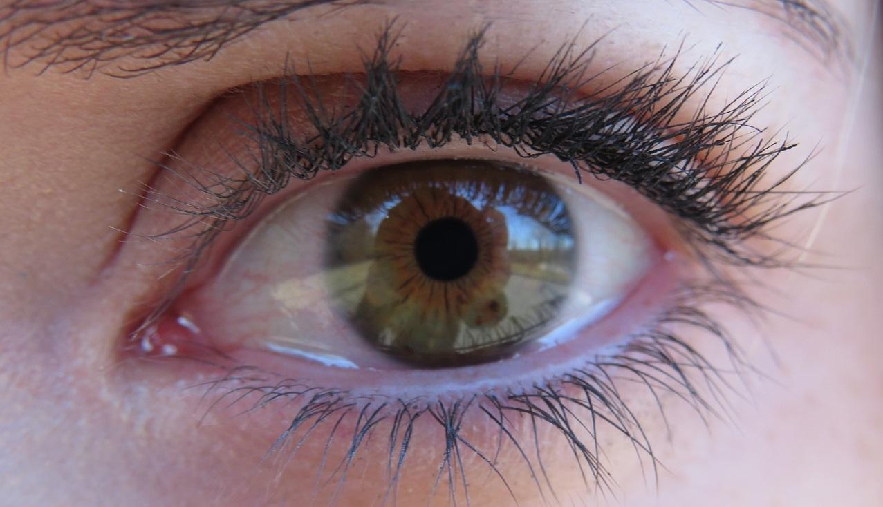Eyelash Booster