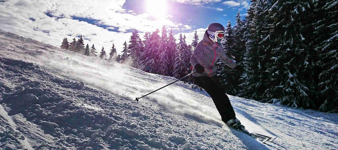 Skisocke